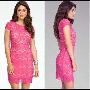 Bebe open back lace midi dress